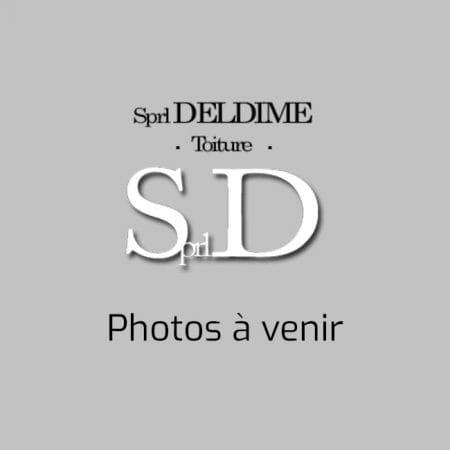 photo-deldime
